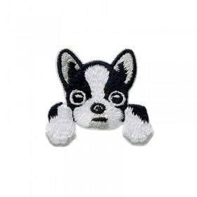 Hund Pocket